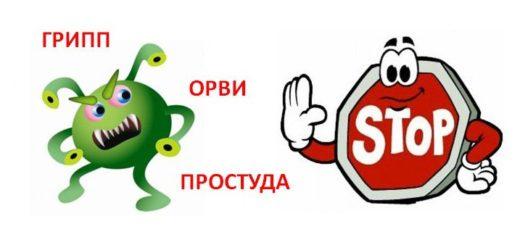 net_orvi