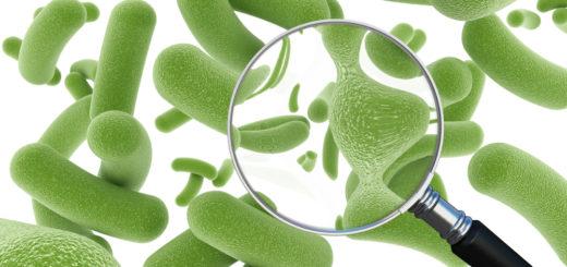 probiotiki